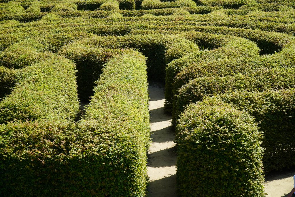 A maze to show about me Outing Therapy