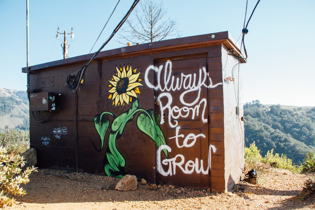 A shed with a sunflower and the words always room to grow
